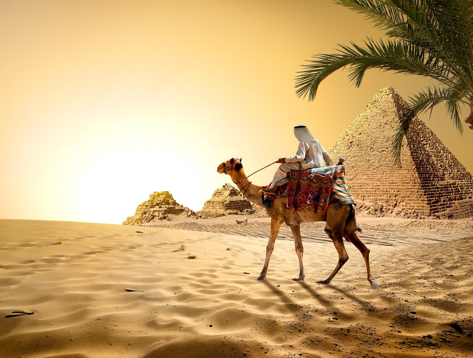古代エジプト人がかつらをかぶっていた?!薄毛治療の歴史に迫る!